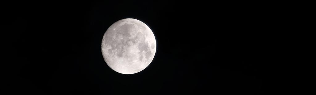 moon long