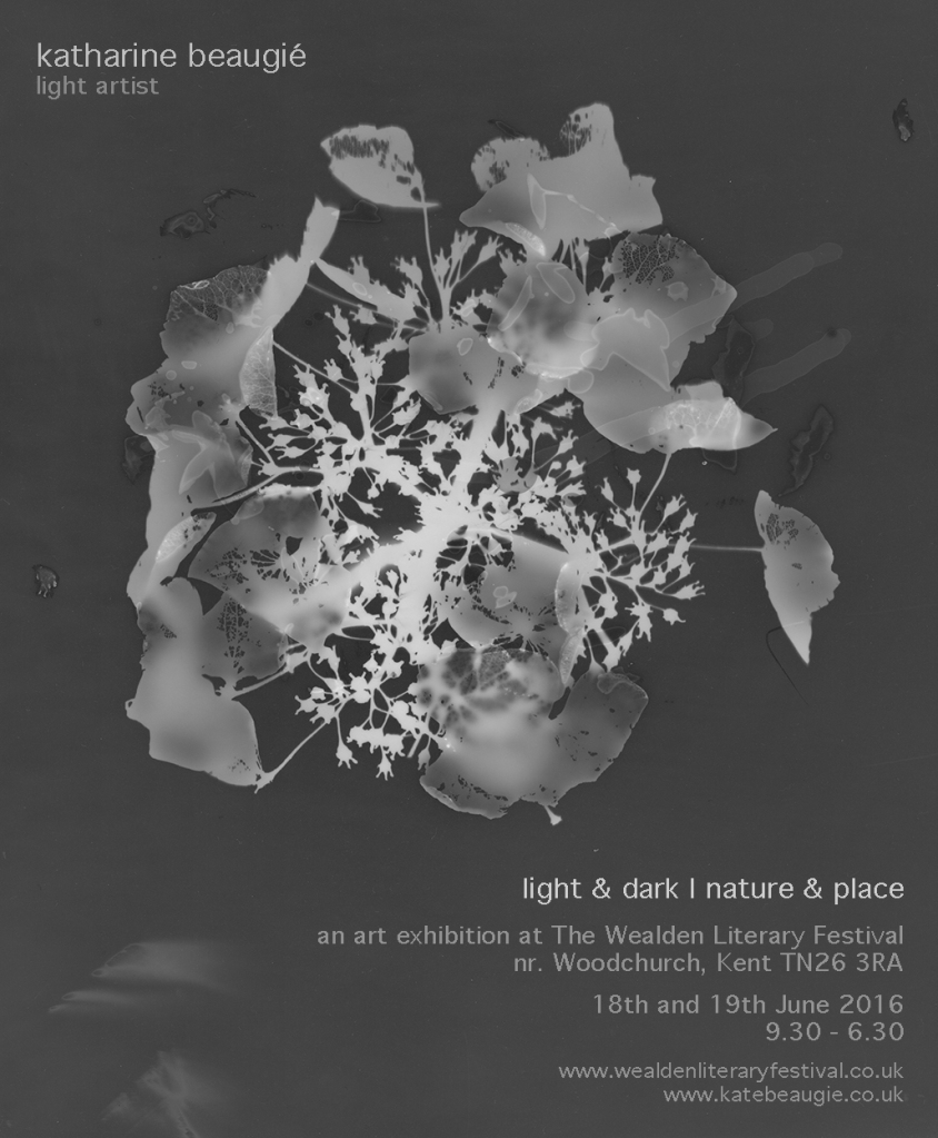 light & dark | nature & place invite
